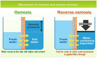 Mechanism of osmosis and reverse osmosis