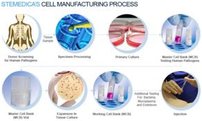 cell manipulation
